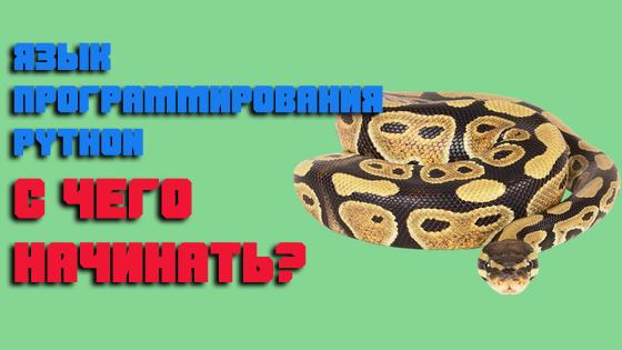 Язык программирования Python— с чего начинать?